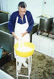 Making Oaxaca style cheese by hand