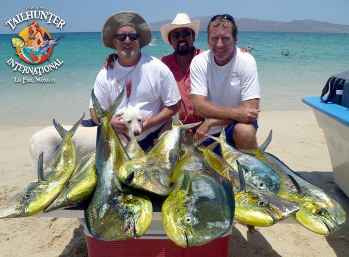 La paz fishing tailhunter international baja for Baja california fishing