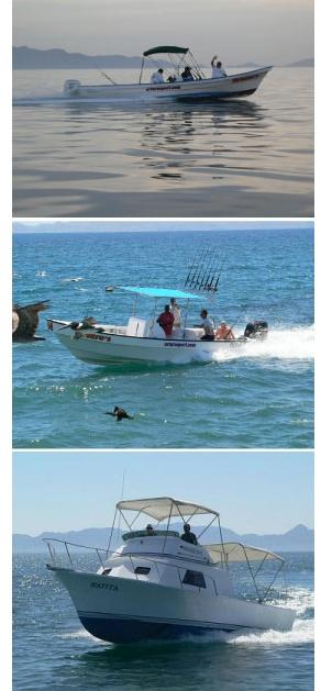 Loreto fishing tours arturo 39 s sportfishing fleet for Baja california fishing
